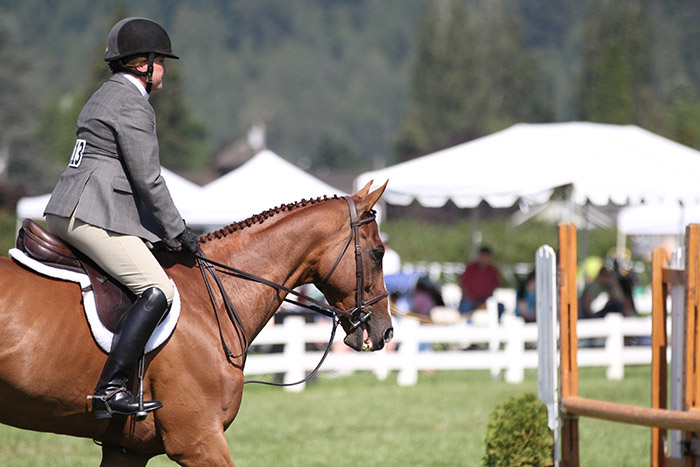 Performance horse show events